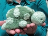 Shirley Darrow Knitted flip Turtle to Frog