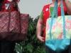 Shelley Greiner Bags 2