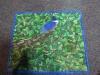 Te Pabon Thread Painting